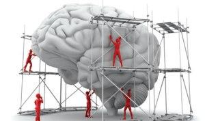 Cosntruindo_Cerebro_Maturidade