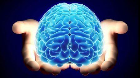 cerebro_portaldamaturidade_medicina_integrativa